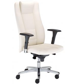 Biuro kėdė 0522