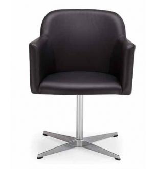 Lankytojo kėdė 0553