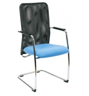 Lankytojo kėdė 0166