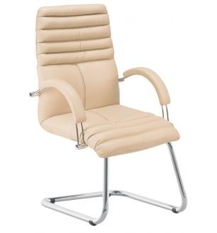 Lankytojo kėdė 0224